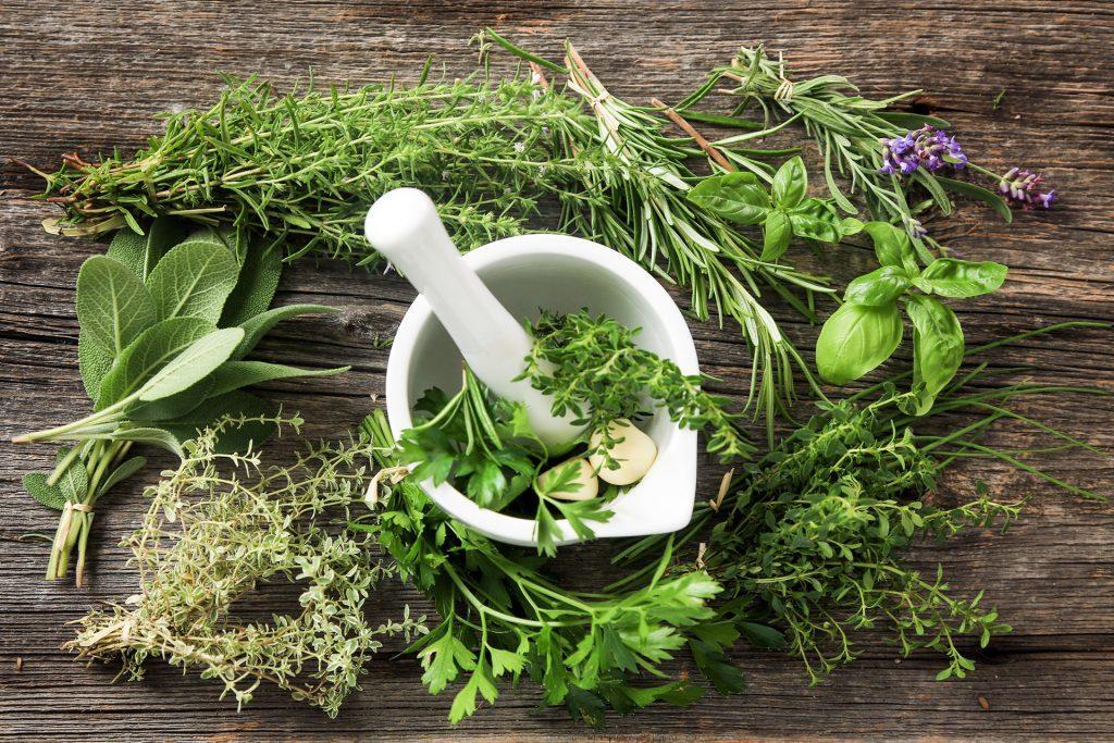 итальянские травы и специи